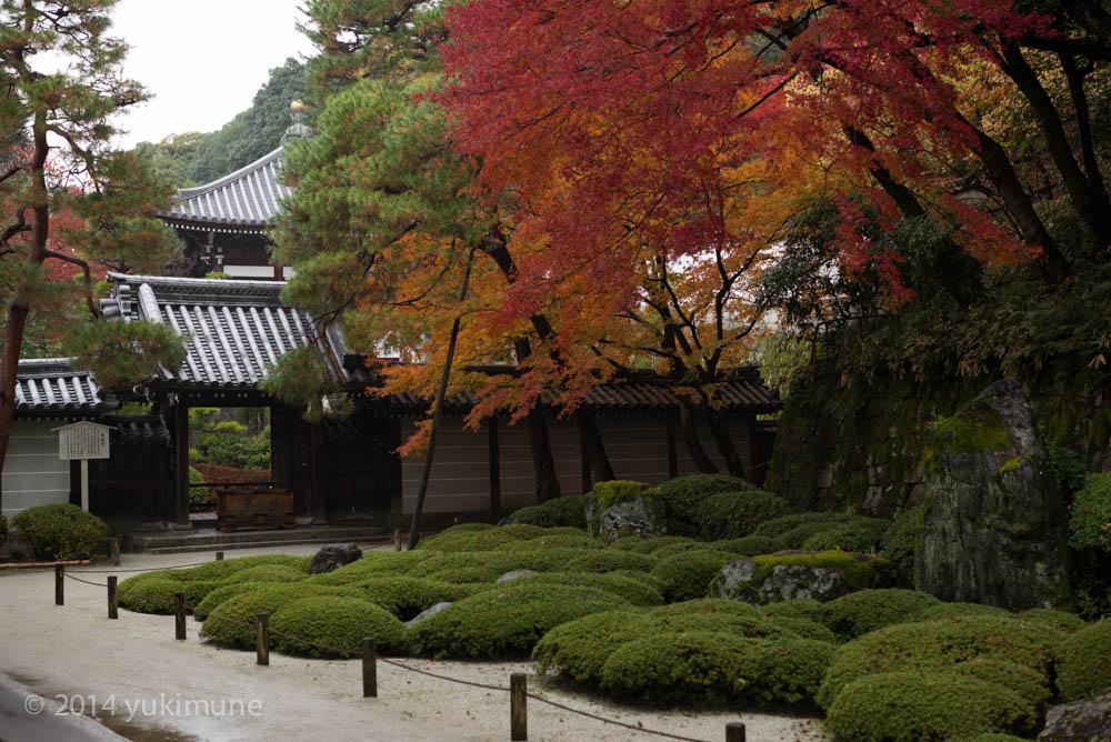 京都 知恩院_d0192712_2041962.jpg
