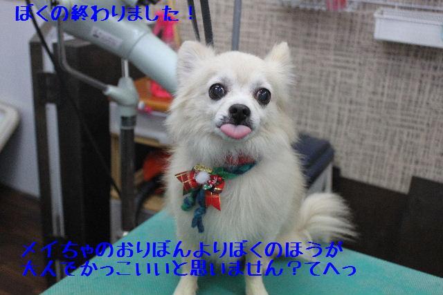 b0130018_16511315.jpg