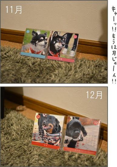 d0212419_1812446.jpg