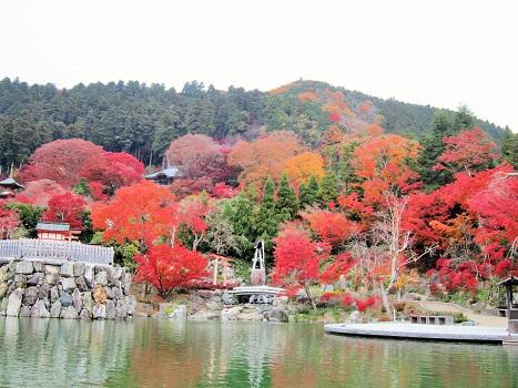 秋も終わり・・・_b0177436_16561357.jpg