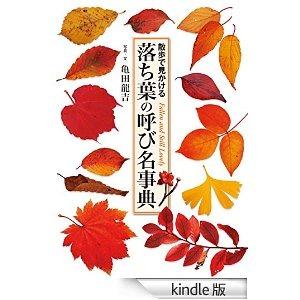 f0073848_025061.jpg