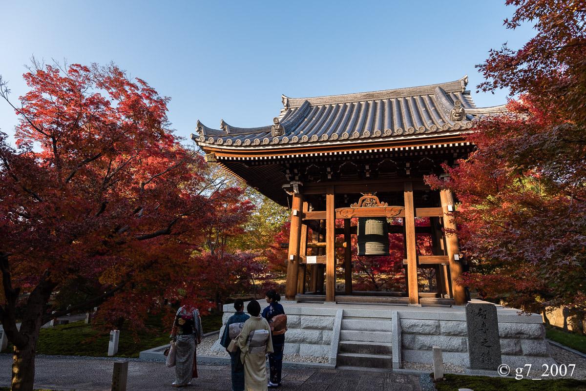 京都の紅葉 2014 〜智積院〜_f0152550_2145113.jpg