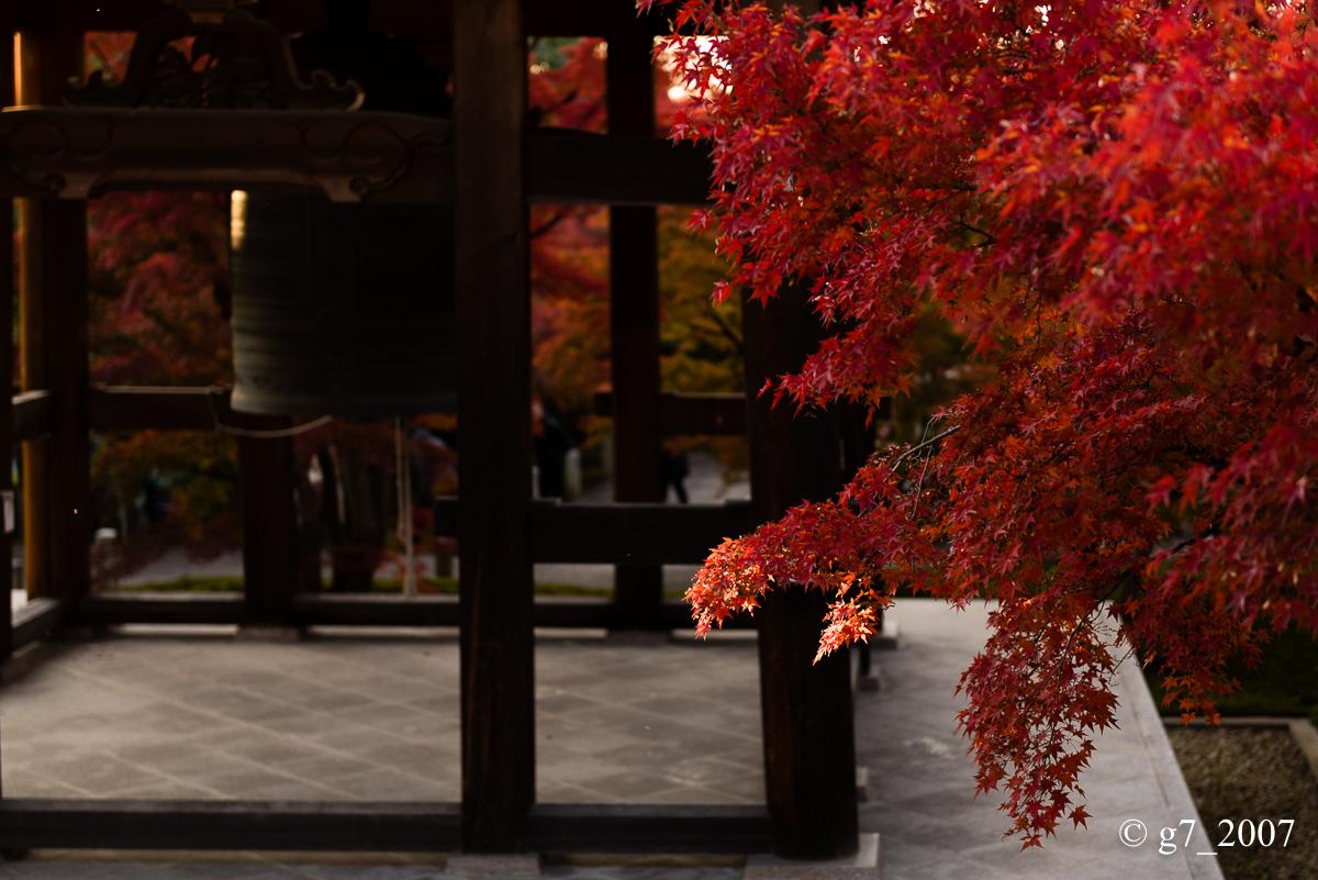 京都の紅葉 2014 〜智積院〜_f0152550_21455049.jpg