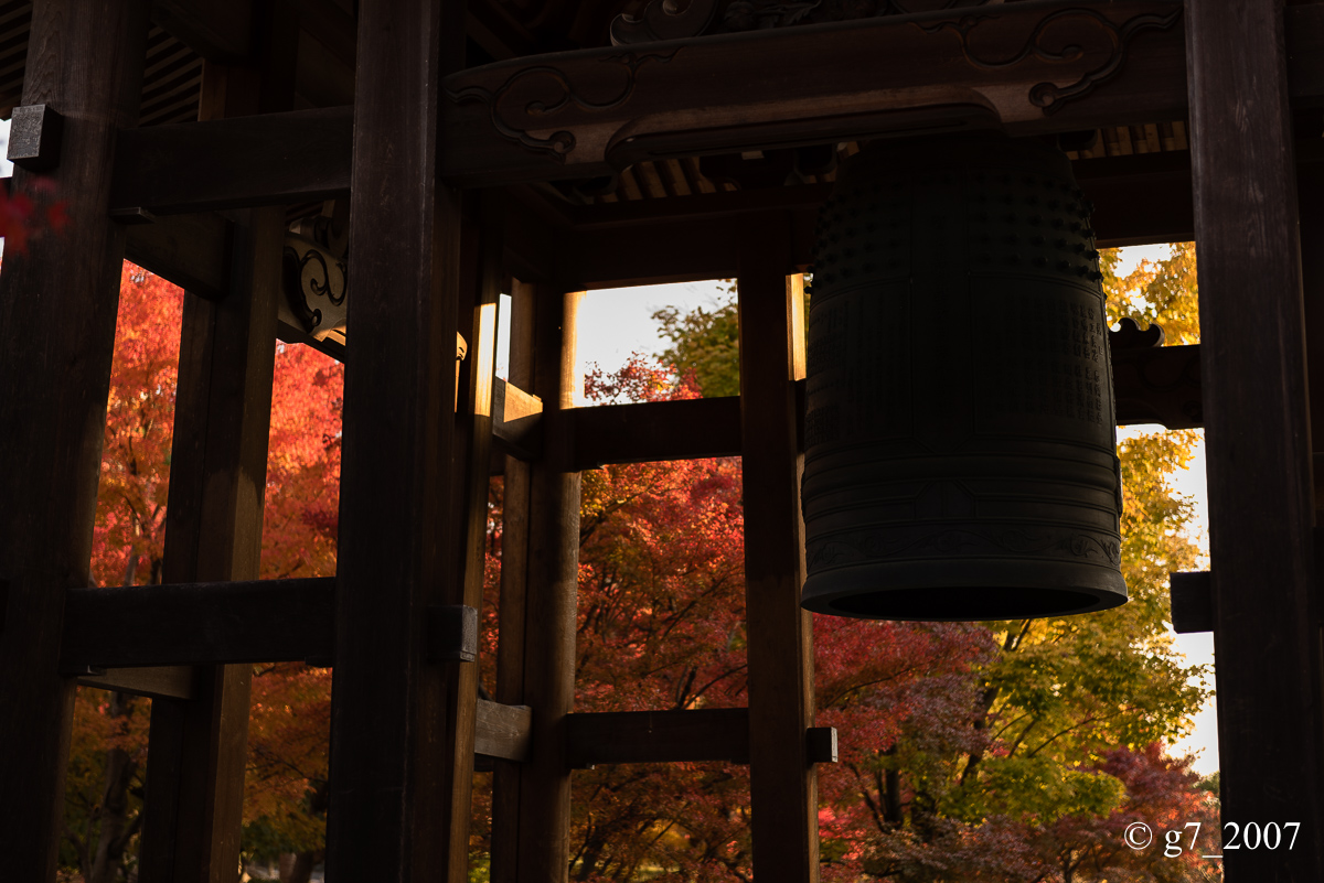 京都の紅葉 2014 〜智積院〜_f0152550_2146638.jpg