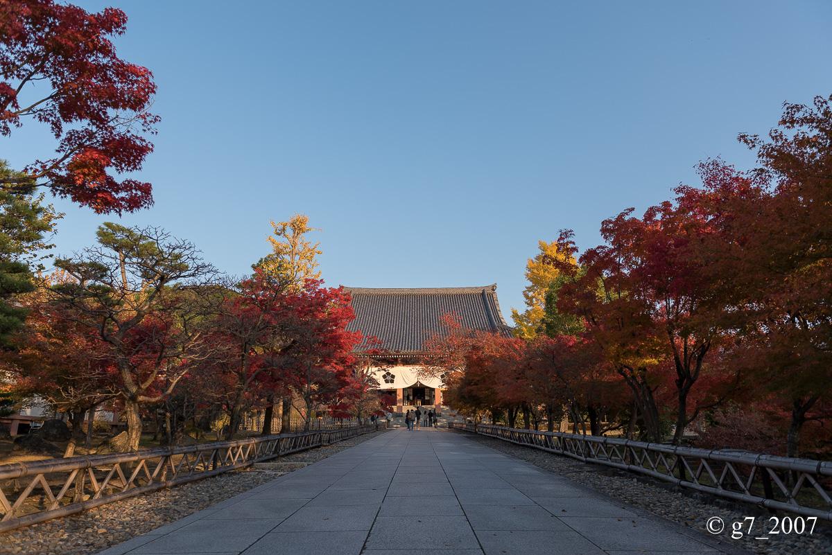 京都の紅葉 2014 〜智積院〜_f0152550_21472223.jpg