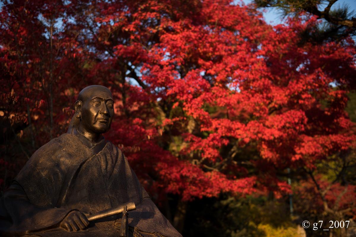 京都の紅葉 2014 〜智積院〜_f0152550_2148382.jpg