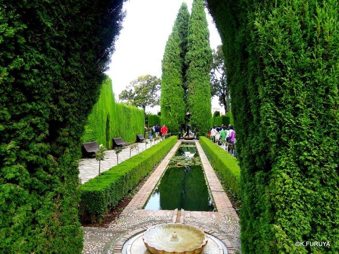スペイン旅行記 16  アルハンブラ宮殿_a0092659_233544.jpg