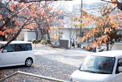 141201 和歌県知事選挙_b0129659_10145023.jpg