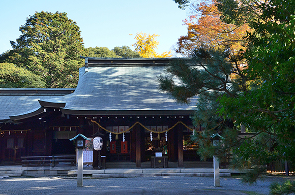 建物完成見学会「片流れ屋根の小さな家」_e0164563_10253842.jpg
