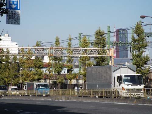 ぐるっとパス番外 東博と東京都美術館まで見たこと_f0211178_1462411.jpg