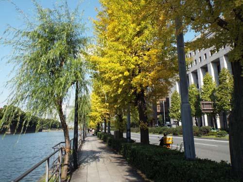 ぐるっとパス番外 東博と東京都美術館まで見たこと_f0211178_1464947.jpg