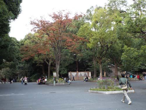 ぐるっとパス番外 東博と東京都美術館まで見たこと_f0211178_1473636.jpg