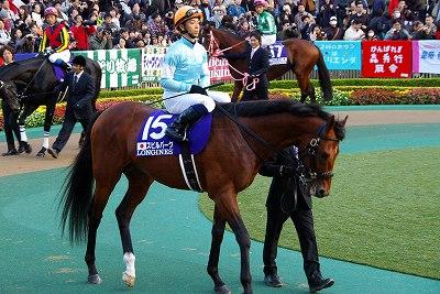 超豪華メンバーのジャパンCは、菊花賞馬エピファネイアが衝撃の圧勝で復活V_b0015386_027272.jpg
