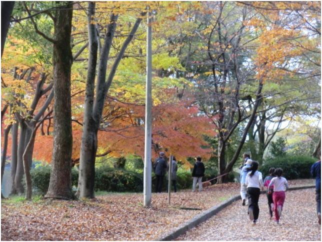 山田池公園の秋・・・_b0104092_1171757.jpg