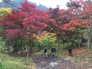 長瀞→御岳  SD SPORTS来たる 2014_f0164003_9342920.jpg