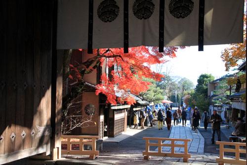 14紅葉めぐり 54 今宮神社_e0048413_19512153.jpg