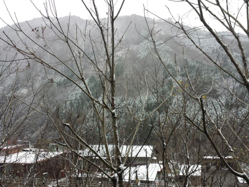 高山へ行ってきました_e0155231_2256223.jpg