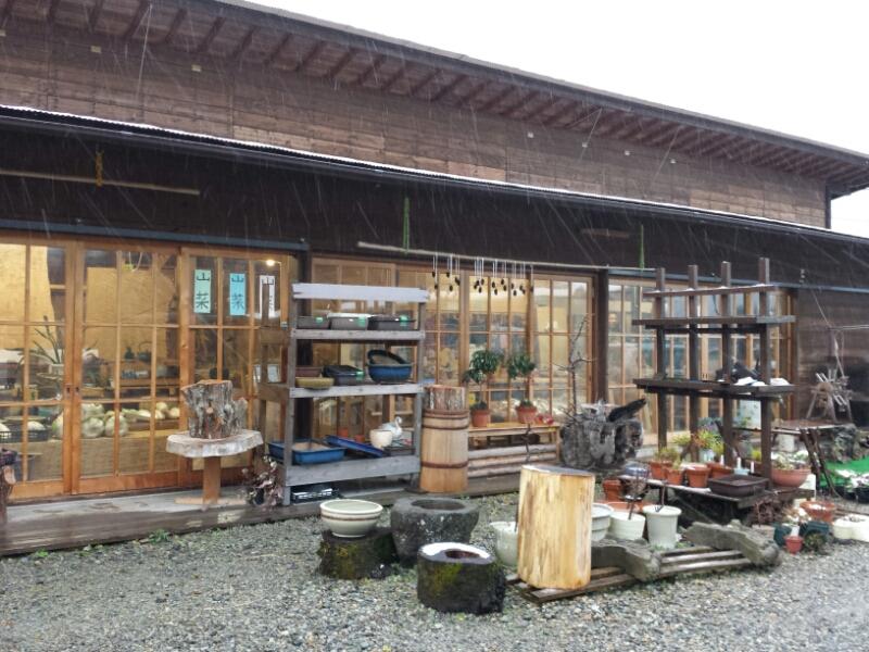 木を買える店_e0155231_23121969.jpg