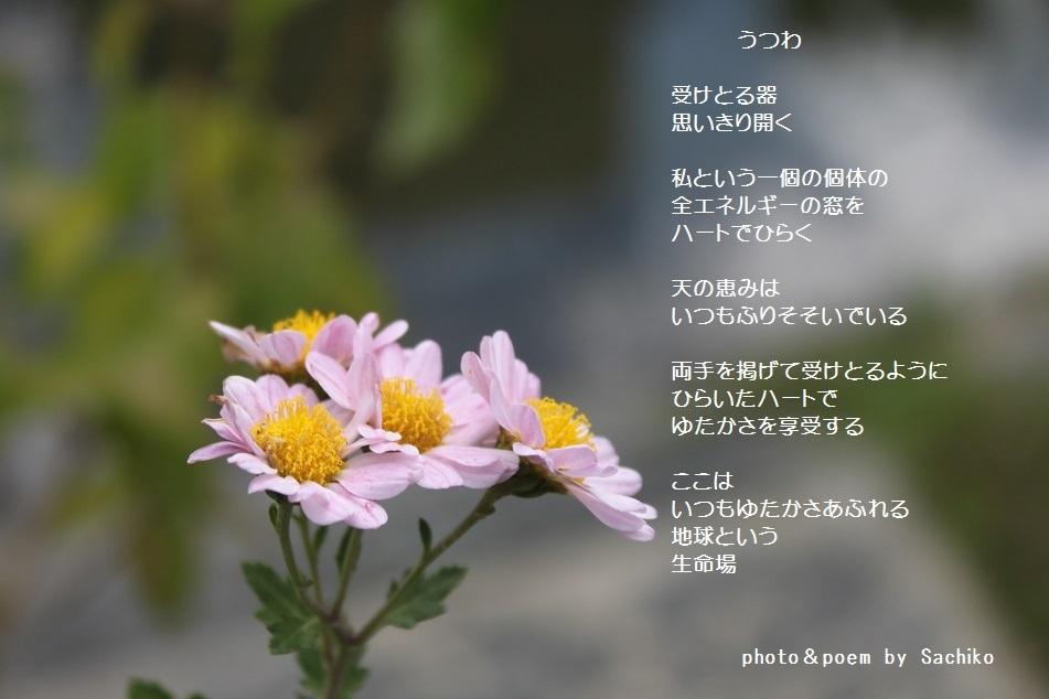 f0351844_13010664.jpg