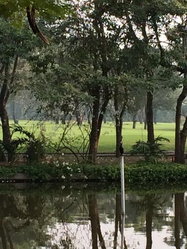 メンバーはタイ人のみの美しいゴルフ場_b0100062_15244152.jpg