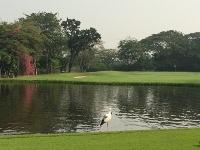 メンバーはタイ人のみの美しいゴルフ場_b0100062_15254437.jpg