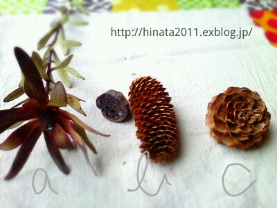 2waywreath workshop 2回目_b0241864_1530524.jpg