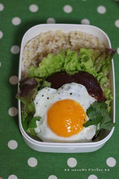 ロコモコ丼 ☆ 白菜たっぷりクリームシチュー♪_c0139375_125084.jpg