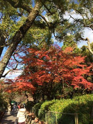 京都_b0332209_13313777.jpg