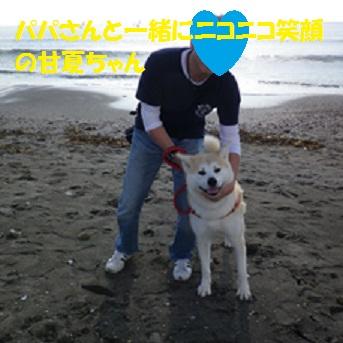 f0121712_16461536.jpg