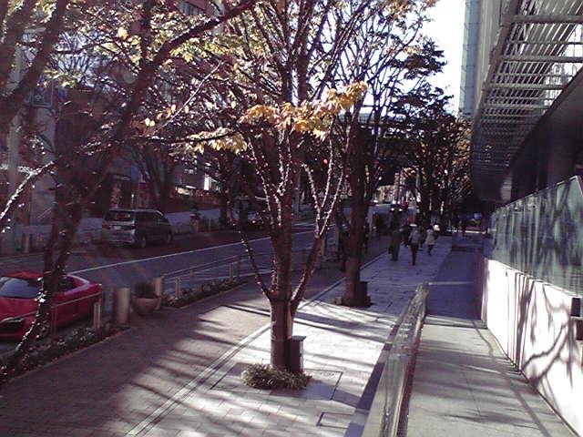 12月の休日_f0079218_957066.jpg