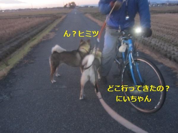f0143123_1073072.jpg