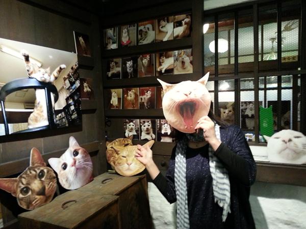 猫いっぱいの癒しのイベント!kachimoさんの「うちの猫ら」カレンダーヴァイキング展へ!_f0357923_1510325.jpg