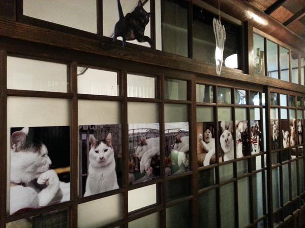 猫いっぱいの癒しのイベント!kachimoさんの「うちの猫ら」カレンダーヴァイキング展へ!_f0357923_1545775.jpg