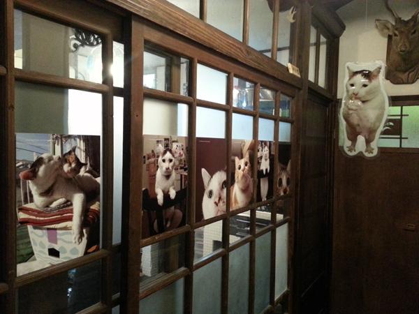 猫いっぱいの癒しのイベント!kachimoさんの「うちの猫ら」カレンダーヴァイキング展へ!_f0357923_15642100.jpg