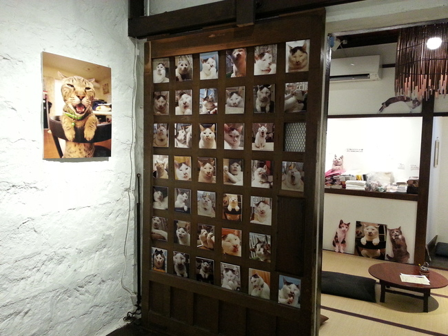 猫いっぱいの癒しのイベント!kachimoさんの「うちの猫ら」カレンダーヴァイキング展へ!_f0357923_1827426.jpg