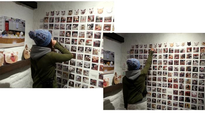 猫いっぱいの癒しのイベント!kachimoさんの「うちの猫ら」カレンダーヴァイキング展へ!_f0357923_1862051.jpg