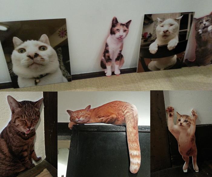 猫いっぱいの癒しのイベント!kachimoさんの「うちの猫ら」カレンダーヴァイキング展へ!_f0357923_22354161.jpg