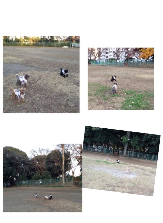 f0108427_17515784.jpg