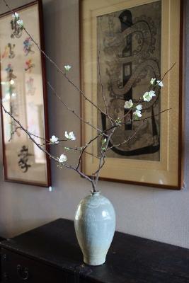 花だより 木瓜_a0279848_14204750.jpg