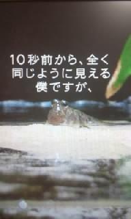 f0200871_011951.jpg