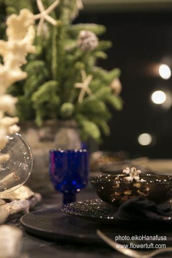 神戸舞子クリスマス2014_c0137872_21573439.jpg