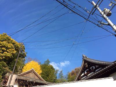 倉敷散策_c0274374_1184179.jpg