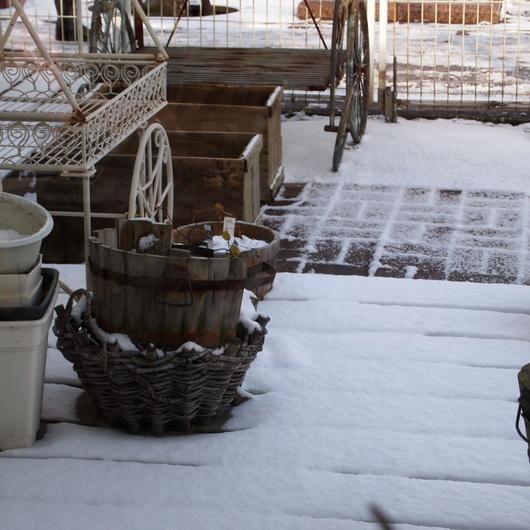冬。店内は11℃とは。。。_a0292194_11212913.jpg