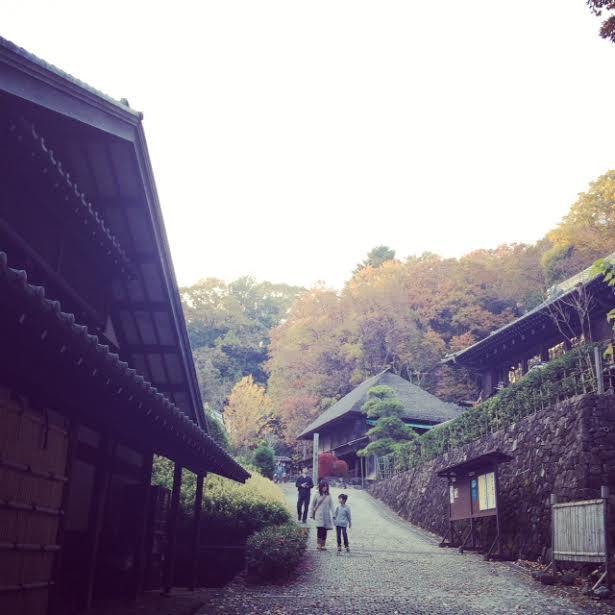 明日から冬のブローチ展です。@向ケ丘遊園Sunny Days &日本民家園_a0137727_22364019.jpg