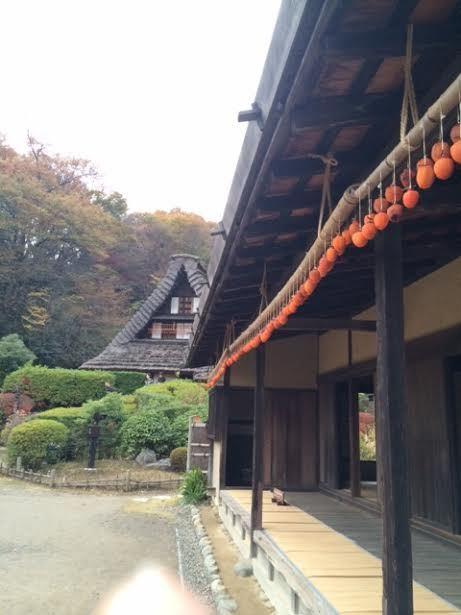明日から冬のブローチ展です。@向ケ丘遊園Sunny Days &日本民家園_a0137727_22530433.jpg