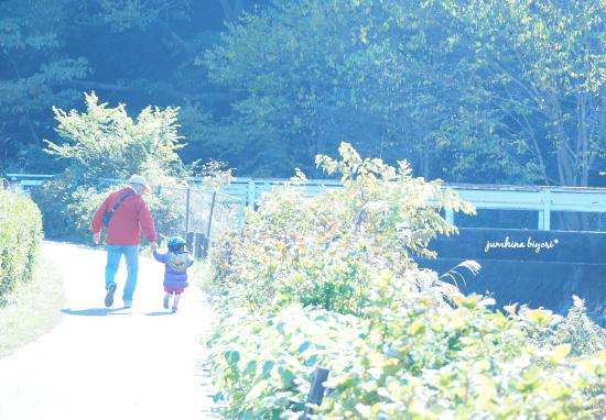 散歩道_e0268051_17550366.jpg