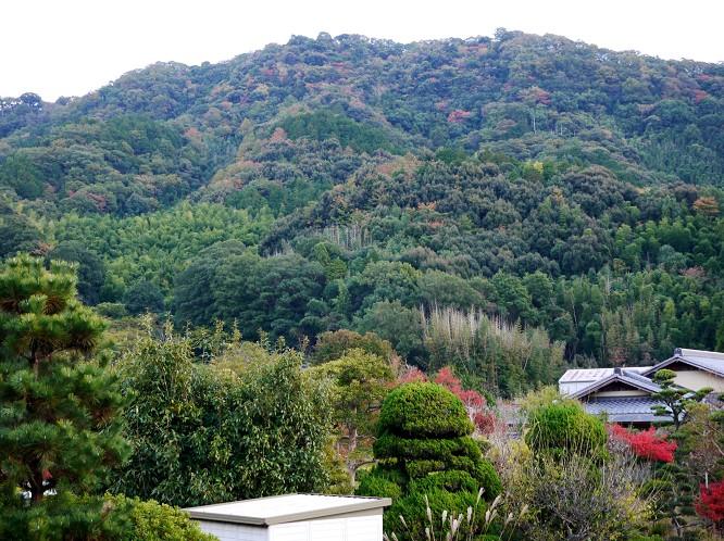 里山の風景_b0093754_19552354.jpg