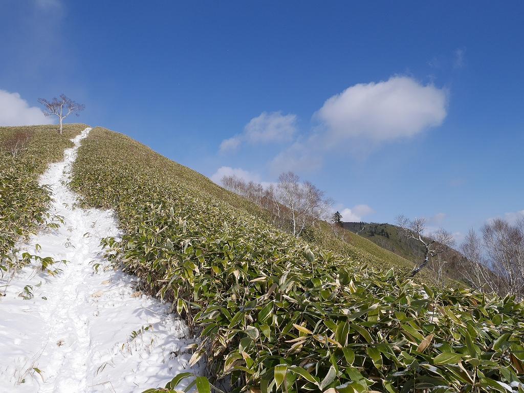 イチャンコッペ山と紋別岳、12月4日-速報版-_f0138096_1745590.jpg
