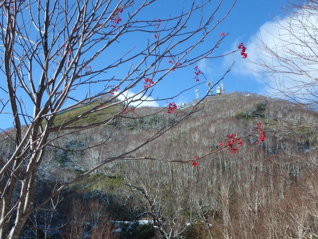 イチャンコッペ山と紋別岳、12月4日-速報版-_f0138096_17513100.jpg