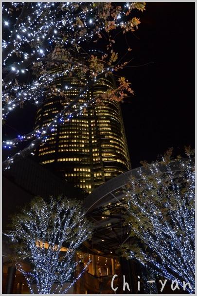 六本木ヒルズ 「けやき坂」 のイルミネーション_e0219011_824473.jpg